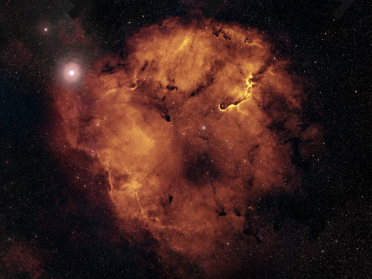 Monsters of IC 1396