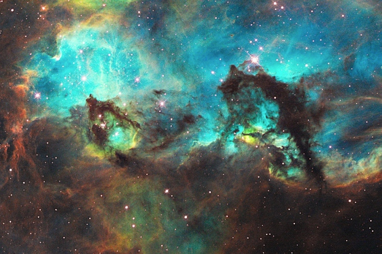 The Seahorse of the Large Magellanic Cloud