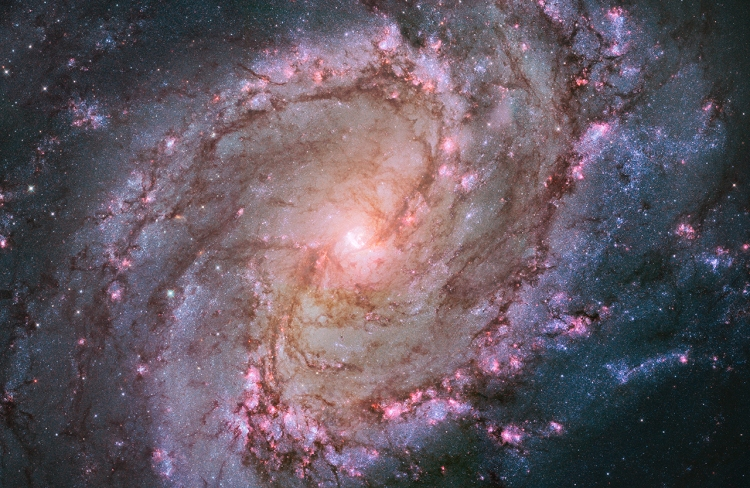 2. Spiral Galaxy M83: The Southern Pinwheel