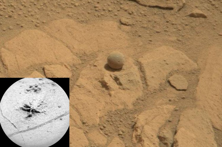 Unusual Rocks near Pahrump Hills on Mars