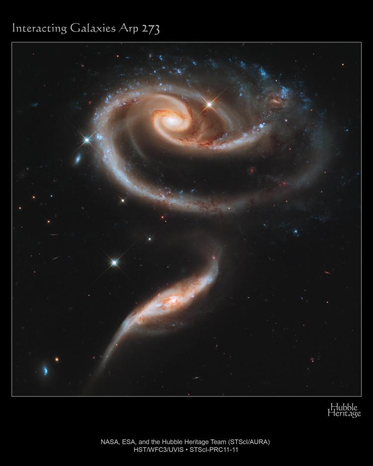 4. A 'rose' made of galaxies. Interacting galaxies Arp 273