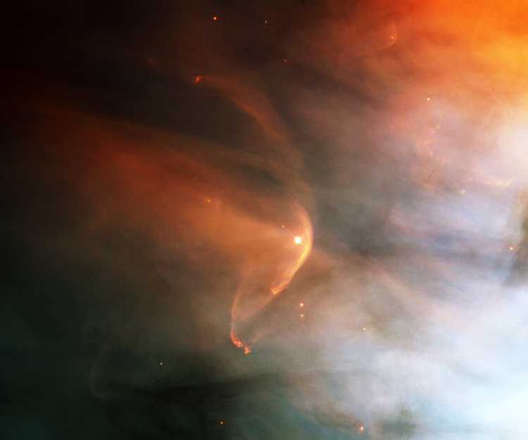 LL Orionis: When Cosmic Winds Collide