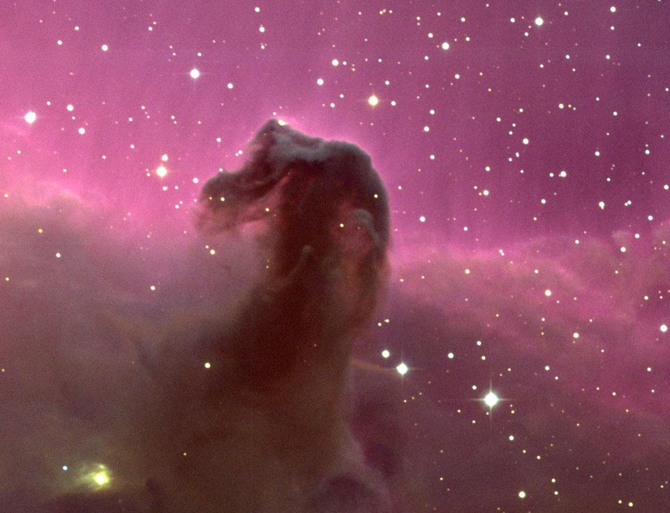 horsehead_kpno_960