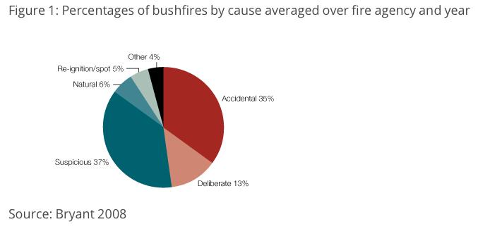 What causes bushfires?